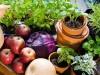 876311-organic-fruit-and-veg