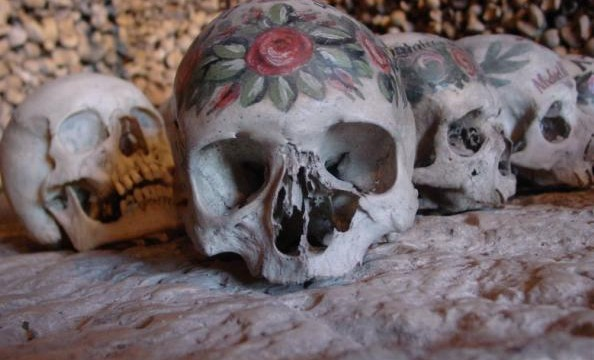 Unique skull sheds new light on human evolution