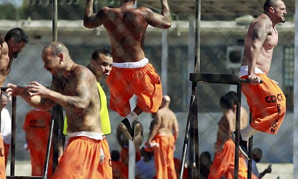 White-collar criminals cope better with prison life than other inmates