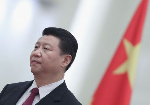 China aims at common development with neighbours: Xi Jingping