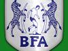 Botswana sack football coach Tshosane