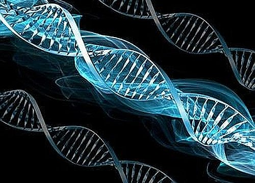 Human DNA could reveal if we will have marital satisfaction or not