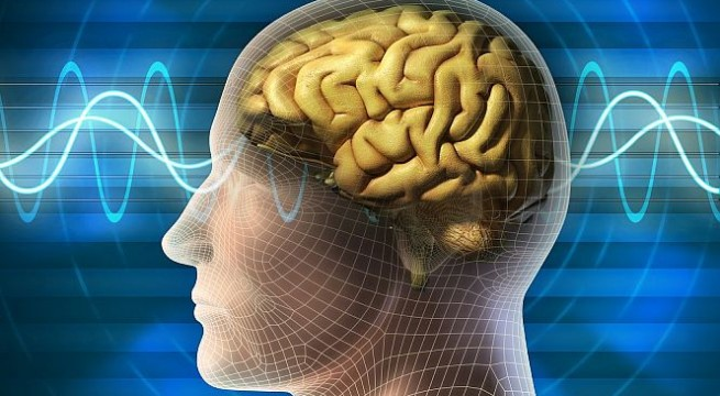 How brain balances learning new skills while retaining old ones
