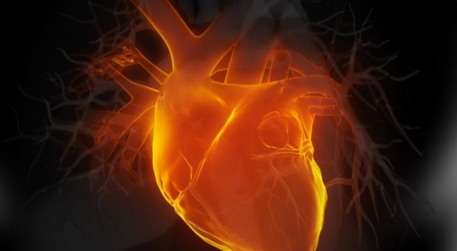 New gene therapy that can reverse heart failure developed