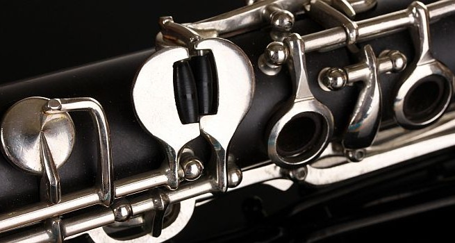 Reed musicians at risk of developing `saxophone lung`