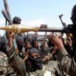 Seven Boko Haram militants killed in Nigeria