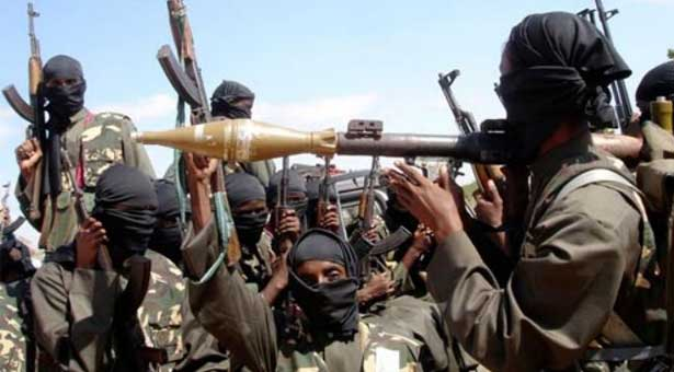 Seven Boko Haram militants killed in Nigeria