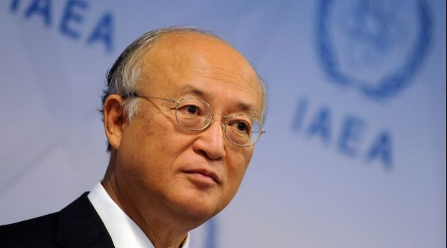 IAEA chief hopes concrete results in talks with Iran