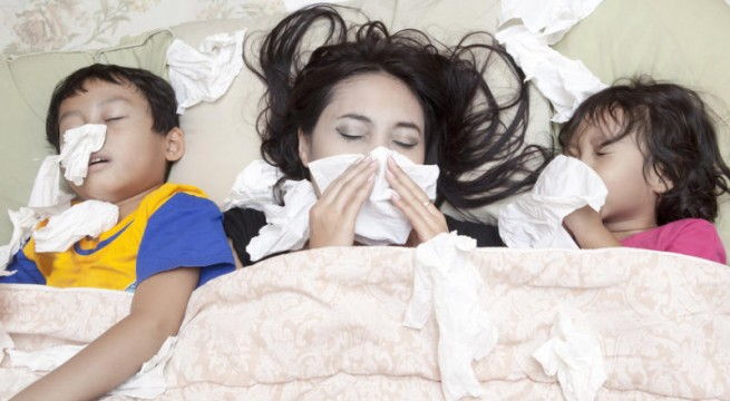 How flu evolves to escape immunity