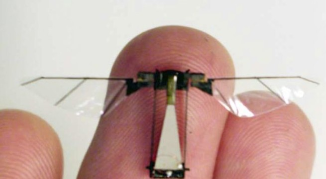 Soon, tiny flying robots inspired by insects