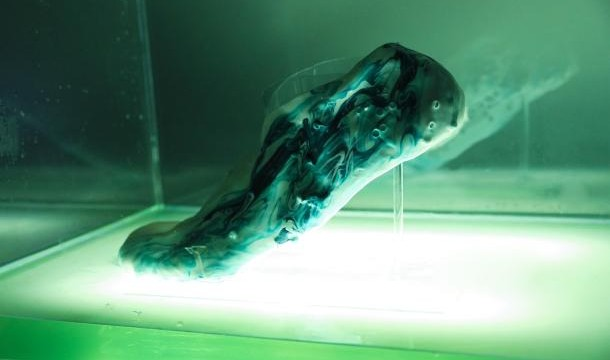 Soon, 3D printed bio-shoes that can repair themselves
