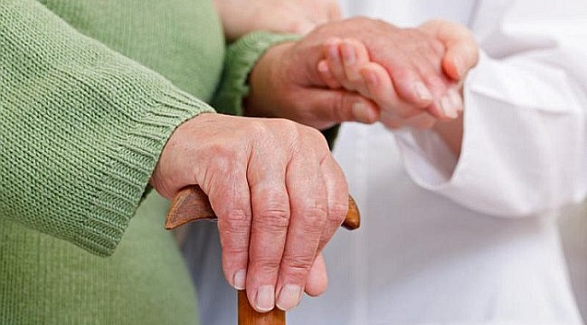 New study provides answers to fundamental questions about Alzheimer's
