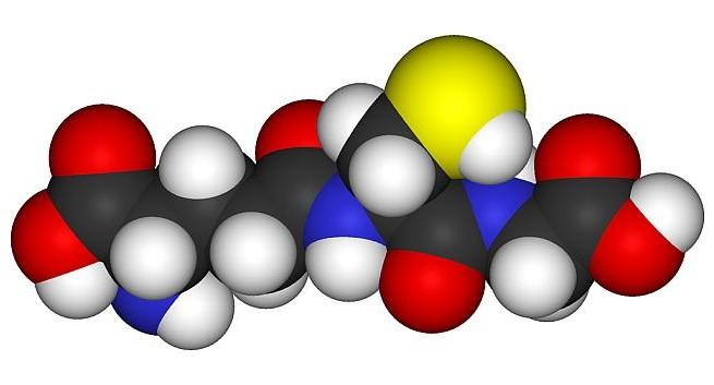 Antioxidant drug may reverse multiple sclerosis: study