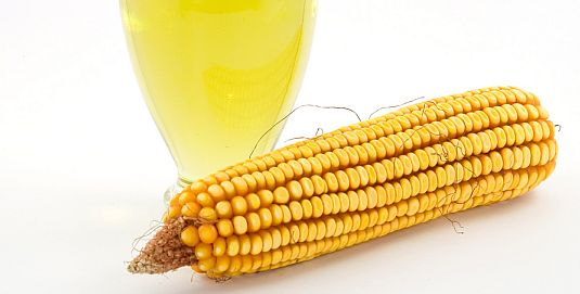 Corn oil better at cutting cholesterol than extra virgin olive oil