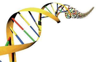 'Junk DNA' in brain may cause schizophrenia