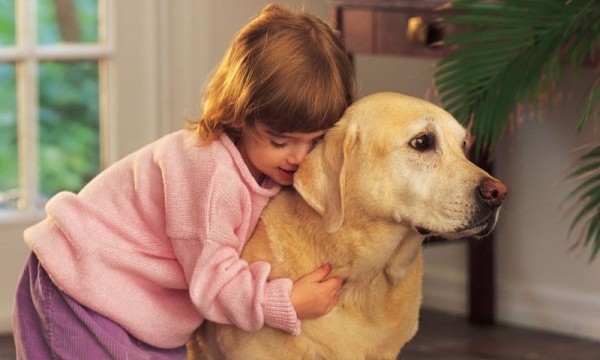 Pet pooches do protect kids against asthma and infection