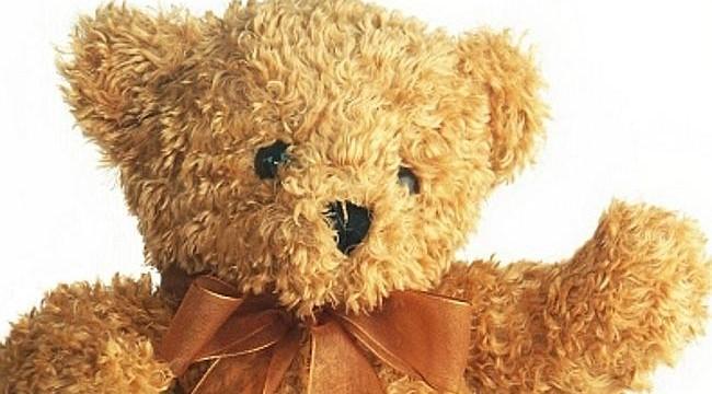 Twitter reunites heartbroken girl with cute teddy bear left on train