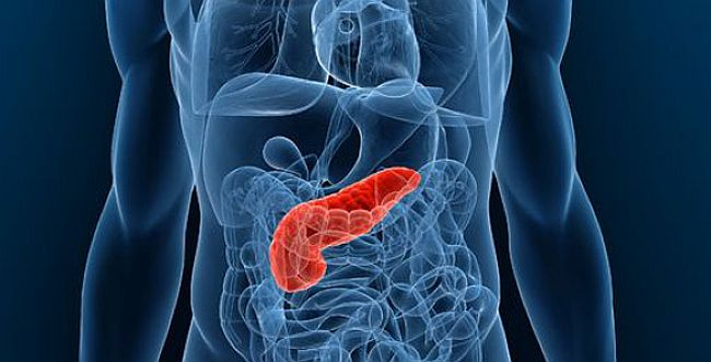 New method for treating pancreatic cancer developed