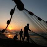 16 TN fishermen arrested by Sri Lankan navy