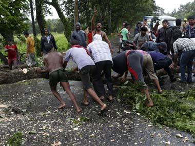 Cyclone_trees_Reuters1