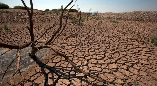 Texas-Fire-Drought