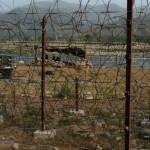 Pakistan violates ceasefire twice along LoC, International Border