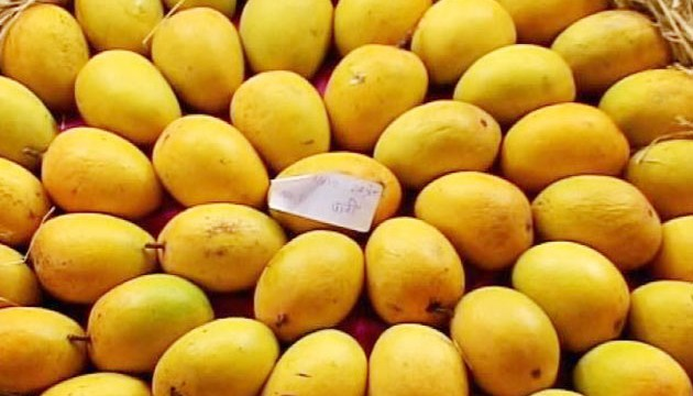 low-yield-to-hit-mango-prices-this-year_140613122656
