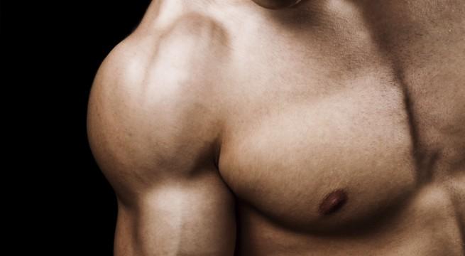 muscle-strength-e1334382219324