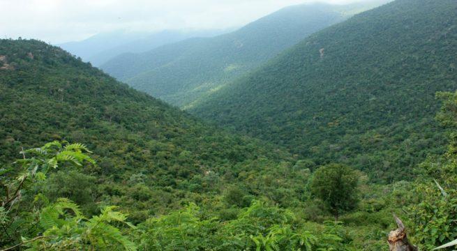 MM-Hills-Karnataka